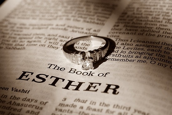 Ruth Esther Bible Study Esther Chapter 1