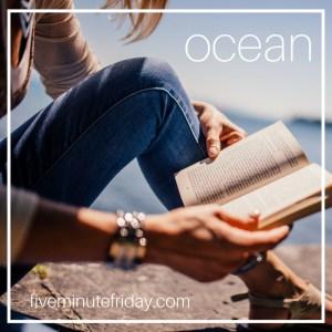 Oceans FMF